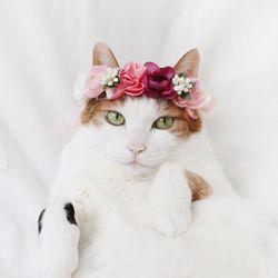 고양이 강아지 큐티핑크 화관 꽃 머리띠 옷 모자 Miyopet 미요펫
