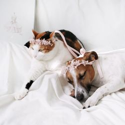 고양이 강아지 발레리나 화관 꽃 머리띠 옷 모자 Miyopet 미요펫
