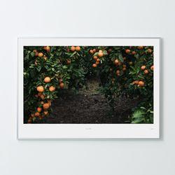 [A3 Print+Frame] 인테리어액자 아트프레임 제주 08