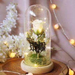 LED 플라워 유리돔 장식 - 장미