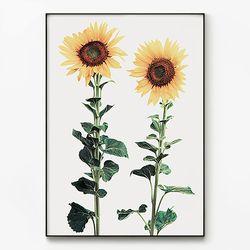 대형 메탈 꽃 식물 행운 포스터 액자 해바라기 ver3