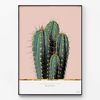 대형 메탈 식물 인테리어 포스터 그림 액자 선인장 패밀리