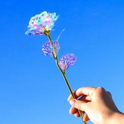 홀로그램 장미 꽃 선물 패키지