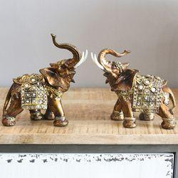 아프리카 코끼리 중 2P