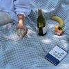 브루니 체크 피크닉매트(베이비블루-패브릭매트만 구매)