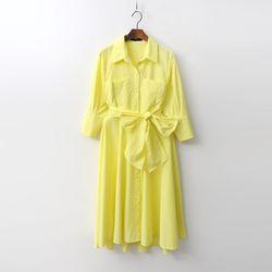 Swan Fit N Flare Shirts Dress