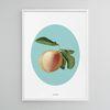 유니크 디자인 인테리어 포스터 M 복숭아 여름 과일 A3(중형)