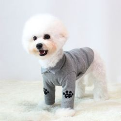 강아지옷 골지 2in1 카라티