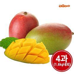 애플망고 4과 (1.6kg내외)