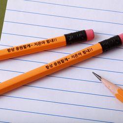 [주문제작]네임연필2B 6자루스테들러