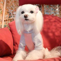 강아지 나그랑 티셔츠 실내복 핑크 블루