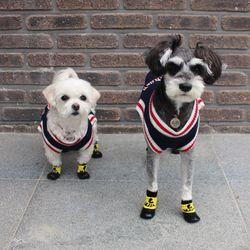 강아지 방수 양말 겸 신발 3color
