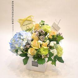 꽃케익배달여자친구200일선물 키위