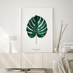 몬스테라 식물 액자 인테리어 A3 포스터