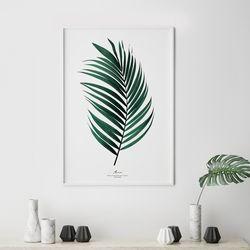 아레카 식물 액자 인테리어 A3 포스터