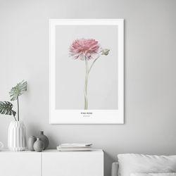 핑크로즈 꽃 그림 인테리어 A3 포스터