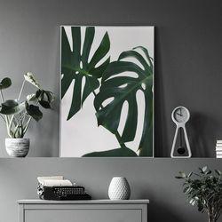 썸머리프 식물 액자 인테리어 A3 포스터