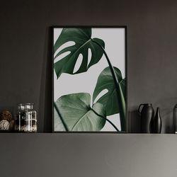 트리플리프 식물 액자 인테리어 A3 포스터