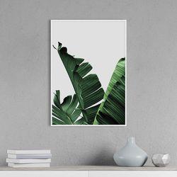 바나나리프 식물 액자 인테리어 A3 포스터