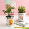 카카오프렌즈 공기정화식물 6종택1