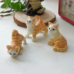 귀요미 고양이 3종
