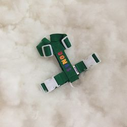 [이름각인] 레인보우 하네스 (초록)