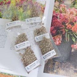 오가닉 친환경 유기비료 (20센치화분용 10포 세트) 식물 화분