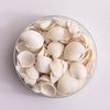 미니 조개껍질(약 100-120개)
