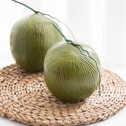 코코넛 모형