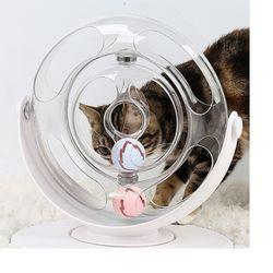 펫트너스 럭셔리 고양이 장난감 스페이스링 (공 캣닢 센서볼)