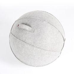 바디엑스 짐볼 커버 (gym ball cover) 짐볼+커버포함