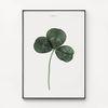 대형 메탈 식물 감성 디자인 포스터 액자 세잎 클로버 행복