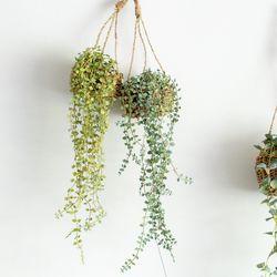 (화분세트) 버들잎바인 라탄 행잉 인테리어 조화