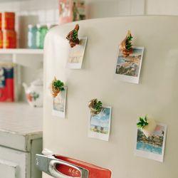 아틀란티스 오션 조개자석(대) 5개-냉장고자석사무실자석