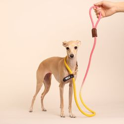 (TWO TONE) SMART LEASH YELLOW PINK
