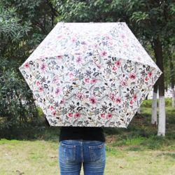 앤가든 5단 양산 겸용 우산