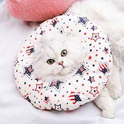 도넛 넥카라 뉴욕스타