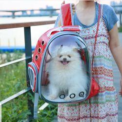 정품 비치백팩 강아지 고양이 투명 캐리어 이동가방