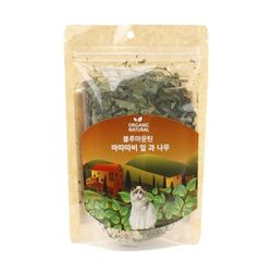 산시아 블루마운틴 마따따비 잎과 나무