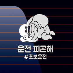 캐찹 자동차스티커 오우덕 운전 피곤해 초보운전 04