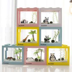동물친구들과 함께하는 국산 마리모 키우기 DIY세트 마리모(소)