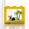 코알라친구와 함께하는 국산 마리모 키우기 DIY세트 (소)