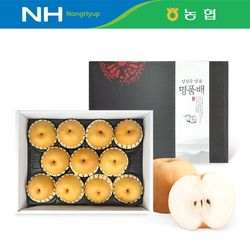 명절선물  농협 안성마춤 신고배 선물세트 6.5kg 11과내외 (특)