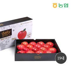 [명절선물] 농협 경북데일리 사과선물세트 5kg 19내 (+보자기)