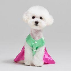 메종드독 강아지한복 다솜