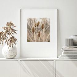 폭스테일 가을 들판 그림 인테리어 A3 포스터