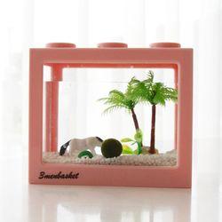 동물친구들과 함께하는 국산 마리모 키우기 DIY세트 마리모(대)