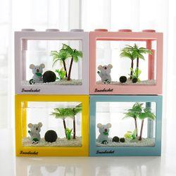 코알라친구와 함께하는 국산 마리모 키우기 DIY세트 (대)