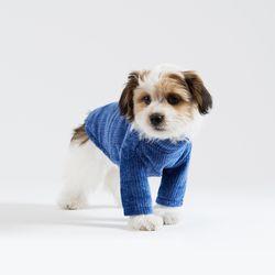 터틀넥 풀오버 스웨터 (블루)