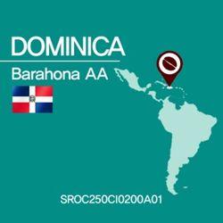 도미니카 바라호나AA(SROC250CI0500A02)1kg 원두커피